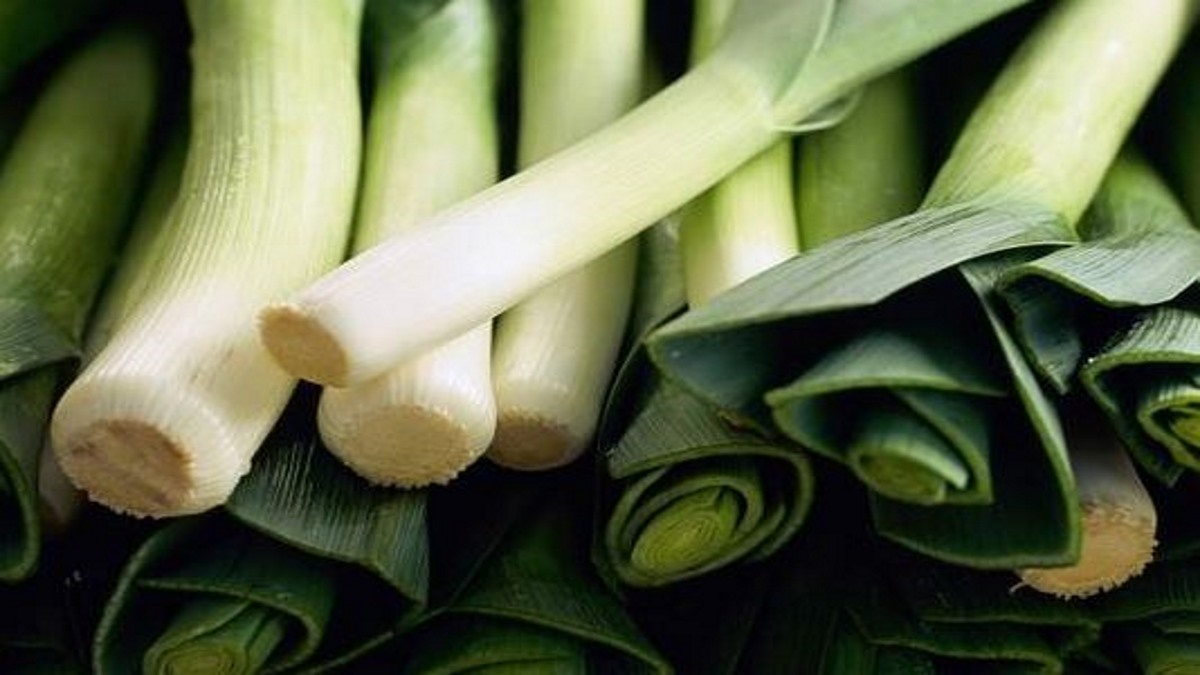 Why leeks are good for you?